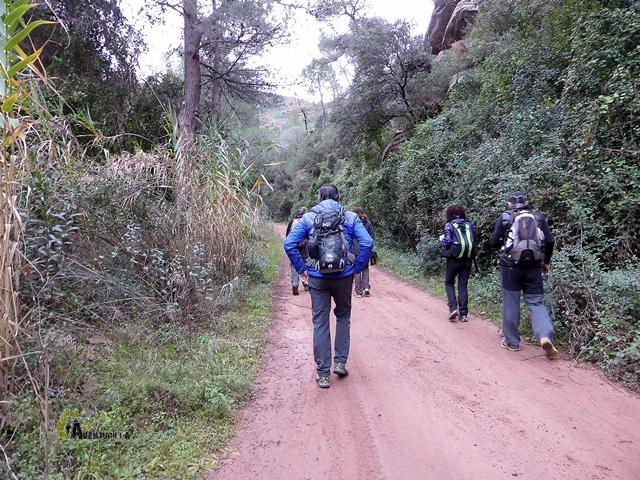 pista forestal en la Calderona