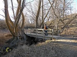 Puente de madera en el río Camarena