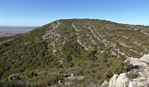 cima del Pico Negrete