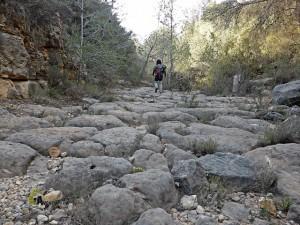 barranco en Pedralba