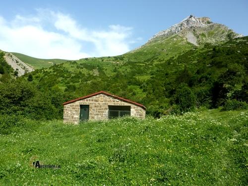 Refugio forestal en la Senda Camille