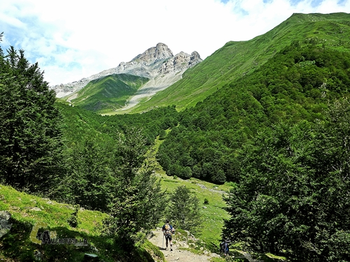 Bonito valle Francés