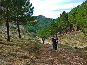 hacia el pico Serrella