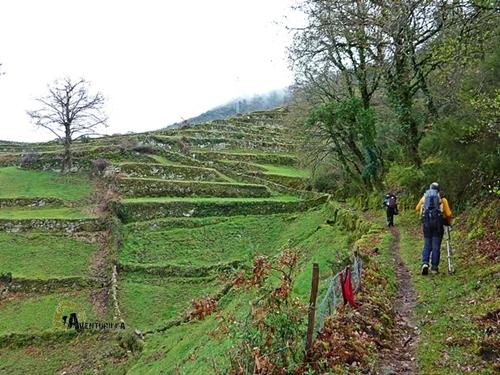 Terrazas de cultivo en Portugal