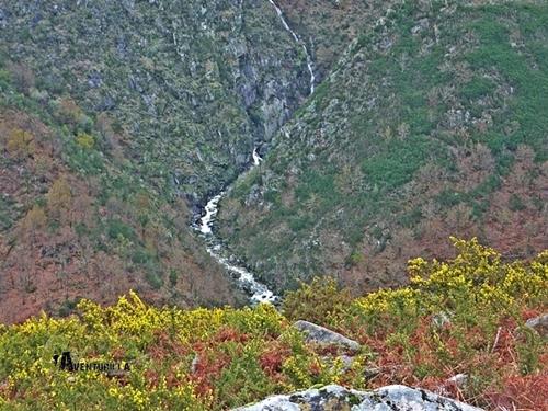 río Mariscal