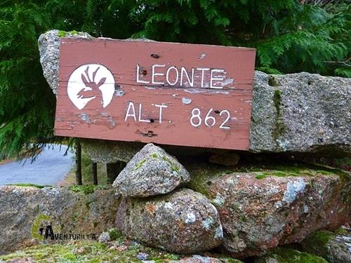 Casa Leonte