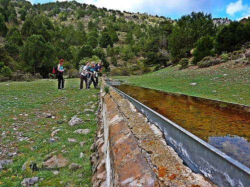 Fuente Cavero