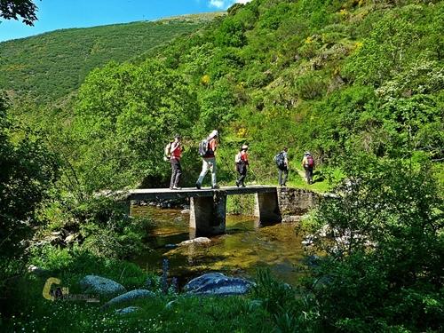Puente en el río Urbión