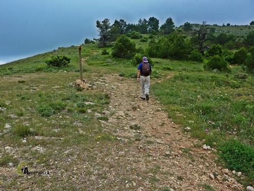 Cruce de senderos en la Mariola