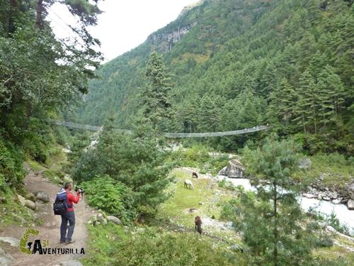 Puente en el valle del Kumbu