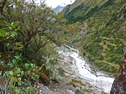 río Imja Khola