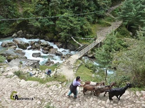 Hacia el campo base del Kusum Kharngkaru