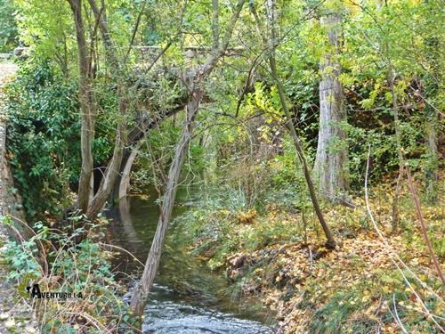 Sendero del río Bohilgues