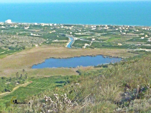 Laguna en la Albufera