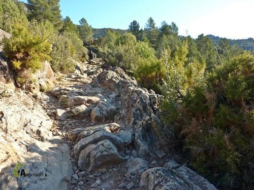 Sendero rocoso