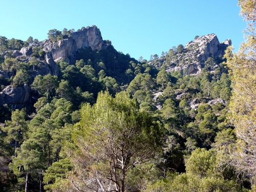 Barranco de las Sabinas