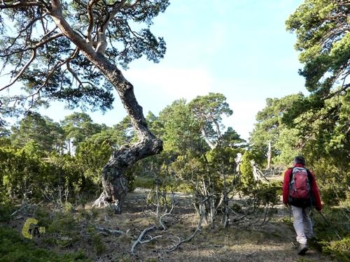 Hacia Monte Negro