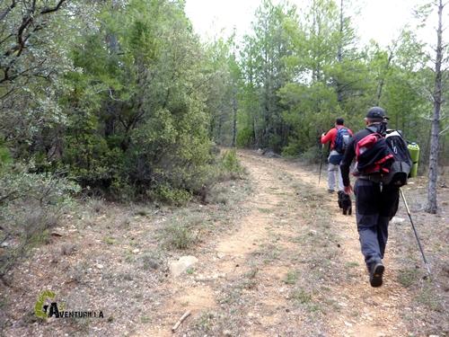 Caminos en la sierra de Gudar