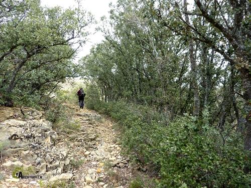 Senderos de la Sierra de Gudar