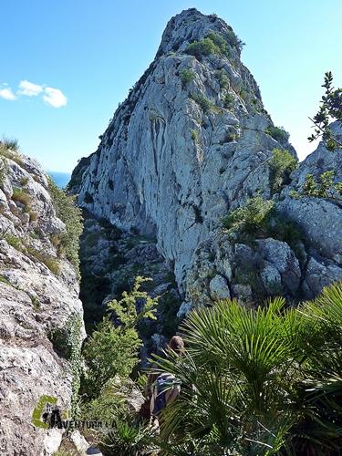 Sierra Segaria