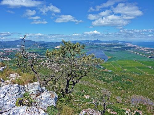 Parque Natural de la marjal de Pego y Oliva.