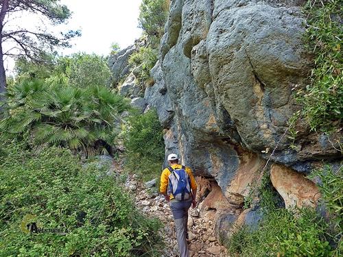 Senda en la sierra Segaria
