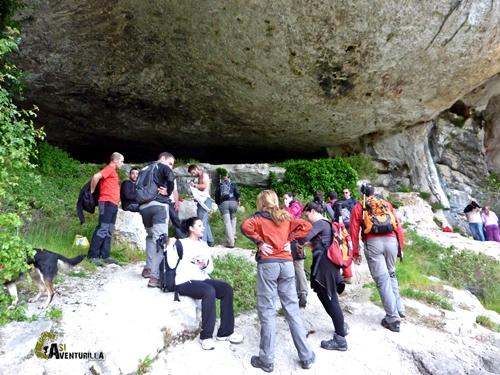 Cova Alta