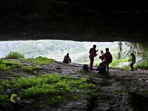 la Cova Alta