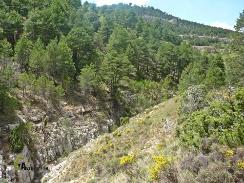Barranco de la Penilla