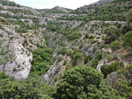 Barranco de la Falconera
