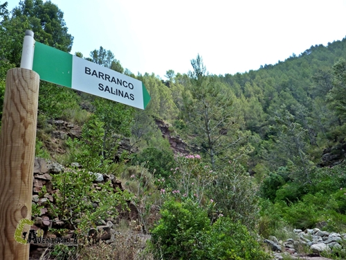 Barranco de las Salinas
