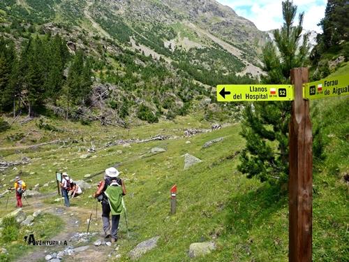 Cruce de senderos en Pirineos