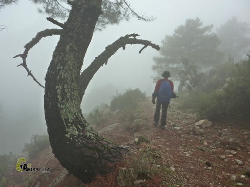 GR247 cerca de La Iruela