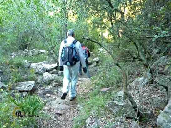 ruta de senderismo en la Calderona