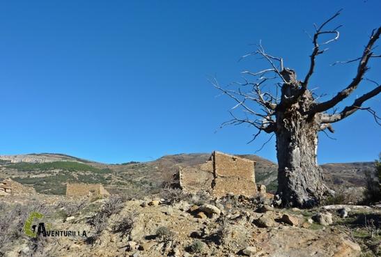 Excursiones por la sierra de Gudar