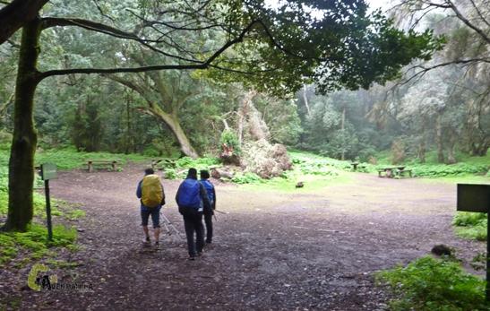 area recreativa en el Parque Nacional de Garajonay