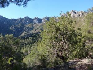 Rutas por Alicante