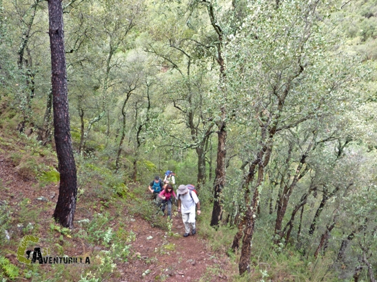 senderismo en la sierra Espadan