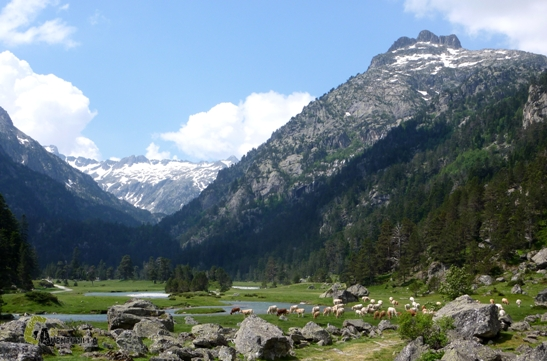 valles Pirenaicos