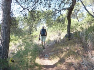 senderos de Olocau