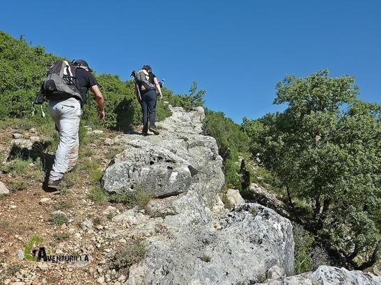 comarca Gudar Javalambre