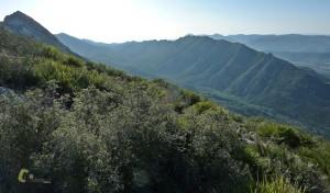 Parque Natural Municipal de los Valles de la Murta y la Casella
