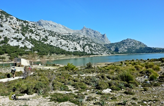 Embalses de Mallorca
