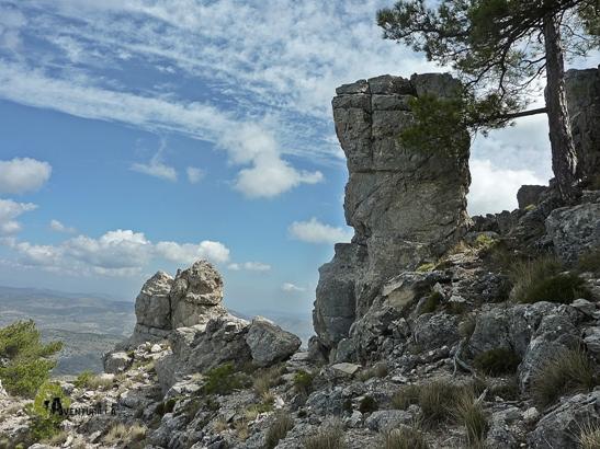 Roquedos en la sierra de Taibilla