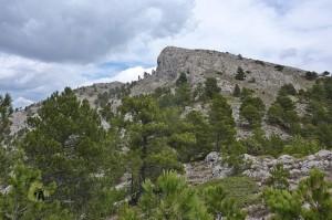 montañas de Albacete