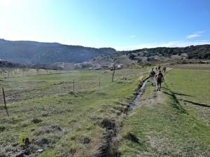 Cañadas de Abajo