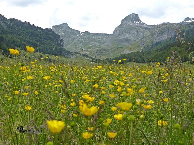 Valle de Bious