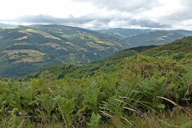 Valle del río Arganza