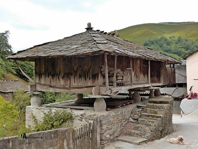 Panera en Asturias