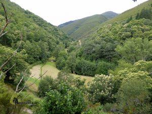 valle de Asturias